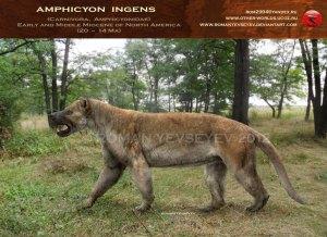 amphicyon_ingens_2_by_romanyevseyev-d4uft4f