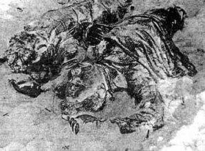 The bodies of Yuri Krivonishenko and Yuri Doroshenko