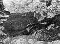 The body of Zina Kholmogorova