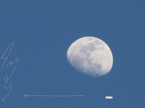 summer_moon_by_aurora1517-d6633dw