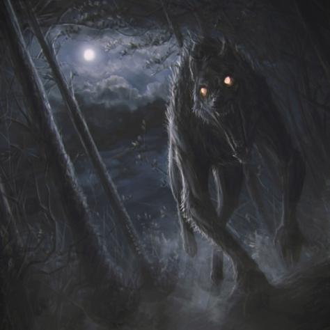 Excellent werewolf by http://stoudaa.deviantart.com/